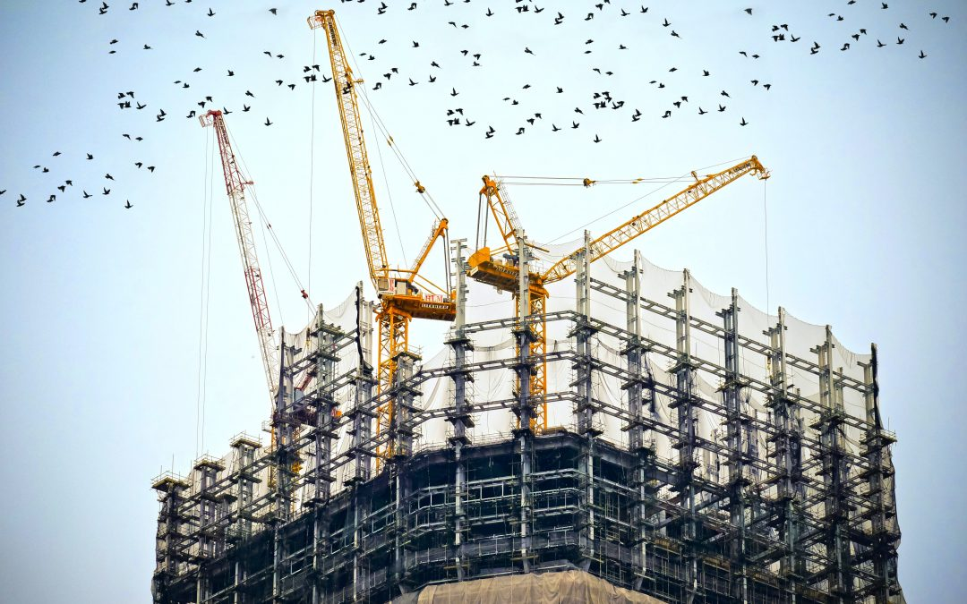 Construction Guide: Top Materials to Invest In for Sustainability